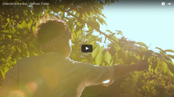 The Film Trailer   Cherries in the Sun