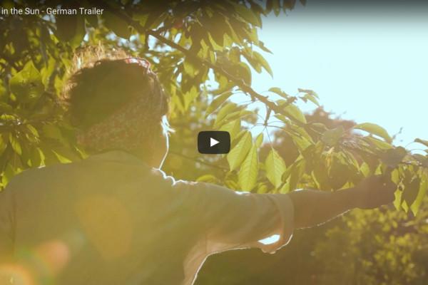 The Film Trailer | Cherries in the Sun